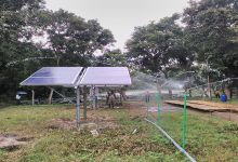 Irrigation by Solar Power in Tea Garden